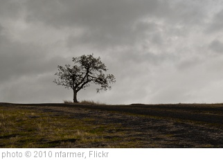 'alone' photo (c) 2010, nfarmer - license: http://creativecommons.org/licenses/by-nd/2.0/