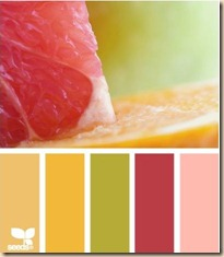 color scheme citrus crush