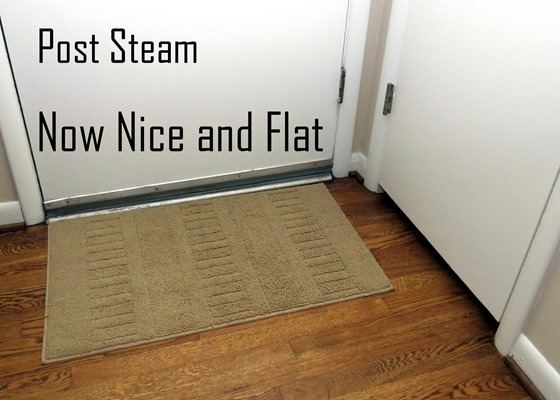 Steam-rug-flat-001-caption