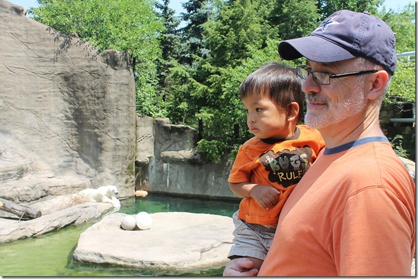 watching the waterfall at the polar bear exhibit