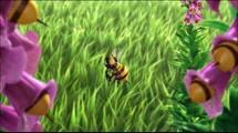 02 les abeilles