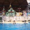 Boudewijn Seapark-099.JPG