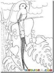 colorear guatemala (1)