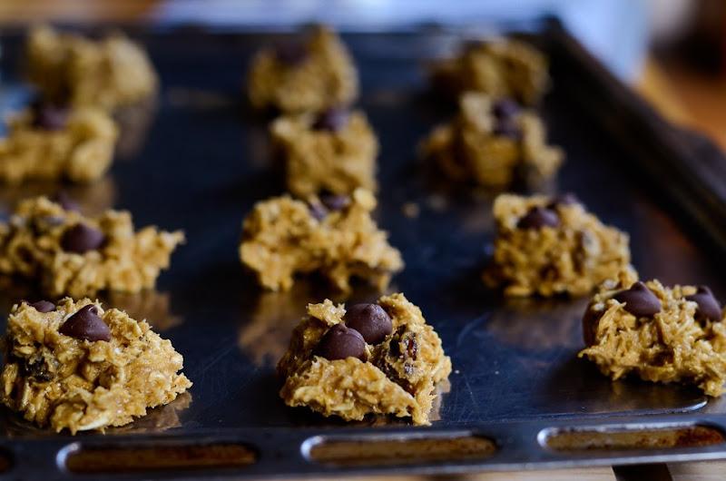 oatmeal gluten free cookies-12812