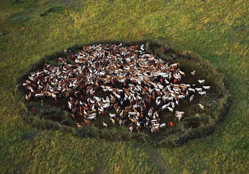 19 Earth from Above by Yann Arthus Bertrand