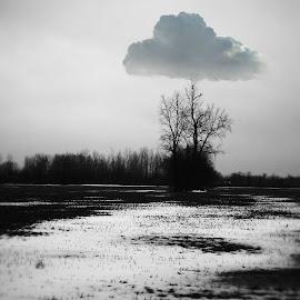 Made with #Pixlr # - http://pixlr.com/mobile by Lloyd Litten - Digital Art Places (  )
