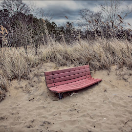 Cold, Alone and waiting for summer by Deborah Felmey - Landscapes Beaches ( winter, bench, cold, beach, landscape, public, furniture, object )