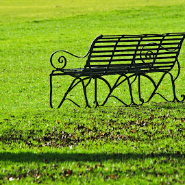 bench by Tomasz Marciniak - City,  Street & Park  City Parks ( uk, park, bench,  )