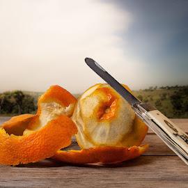orange by Alfonso Emmanuel Galina - Food & Drink Fruits & Vegetables ( orange, juice )