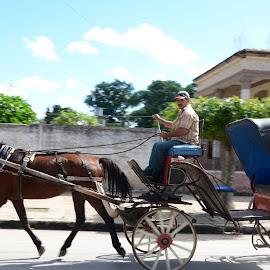 Horse and carriage  by Katrina Olafson - Transportation Other ( blue sky, carriage, horse, transportation, cuba )