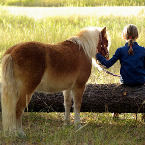 Me and my pony by Giselle Pierce - Babies & Children Children Candids ( field, child, miniature horse, grass, horse, children, log, kid )