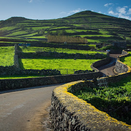 Fonte do Bastardo by Amy Matthes Okasinski - Landscapes Mountains & Hills ( hills, terceira, road, rocks, azores )