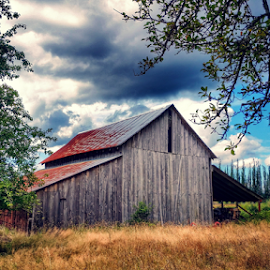 this old barn by Todd Reynolds - Buildings & Architecture Decaying & Abandoned