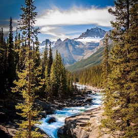 Rushing Water by Sheldon Anderson - Landscapes Mountains & Hills ( water, picturesque, mountain, canada, calming, forest, beauty, day, landscape, river,  )