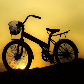 by Zai Hasra - Transportation Bicycles