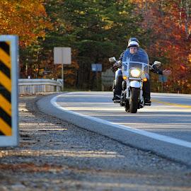 Fall ride by Paul Brumit - Transportation Motorcycles ( street, fall, motorcycle, transportation, people )