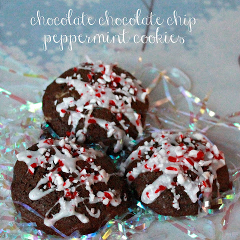 Chocolate Chocolate Chip Peppermint Cookies