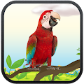 Download Real Talking Parrot APK on PC