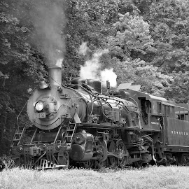 Black & white by Janice Burnett - Transportation Trains ( steam locomotive, steam engine, steam train, old steam train, nostalgia )