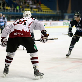 1 on 1 by Karlo Teur - Sports & Fitness Ice hockey ( khl, hockey, ice, game, dinamo riga, medveschak )