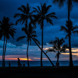 tropical sunset by Vibeke Friis - Landscapes Sunsets & Sunrises ( sunset, beach, palms )