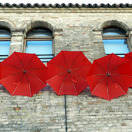 windows&brollies by Isabella Scotti - Buildings & Architecture Other Exteriors (  )