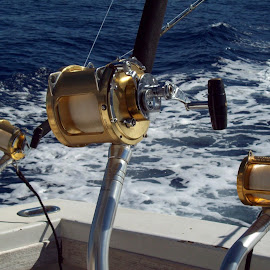 Deep Sea Gear by Lorelei Cox - Novices Only Sports ( hawaii deep sea fishing )
