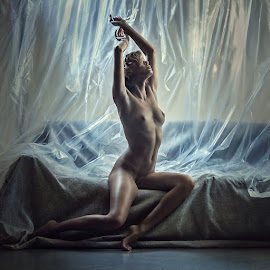 Chucha by Dmitry Laudin - Nudes & Boudoir Artistic Nude ( film, sofa, nude, woman, light )