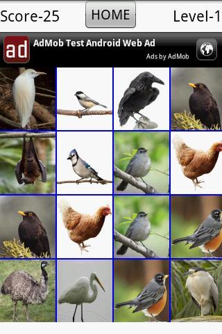 Birds Breaker