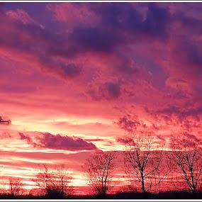 color of the sunset by Zlatko Sarcevic - Landscapes Sunsets & Sunrises ( clouds, skyline, sky, color, sunset, táj,  )