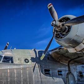 Gruman Albatros by Ron Meyers - Transportation Airplanes