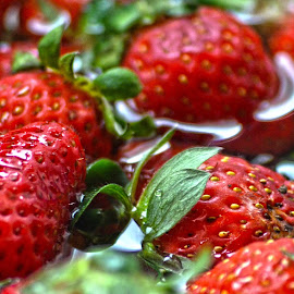 by Sanja Radic-Miovic - Food & Drink Fruits & Vegetables