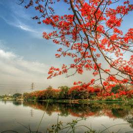 telaga ngipik by Rizal Debby - Landscapes Travel ( indonesia, landscape photography )