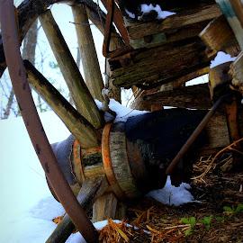 Broken Down by Steve Parsons - Transportation Other ( broken, dilapidated, wheel, wagon wheel, wagon, western )