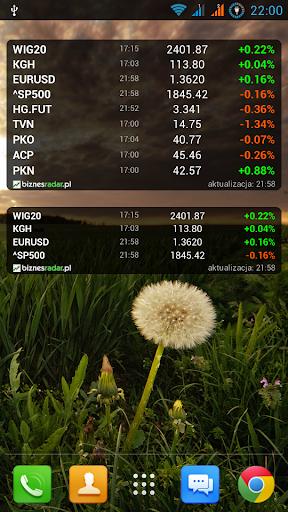 Notowania giełdowe BiznesRadar - screenshot