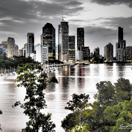 Brisbane City by Carryl Kilgannon - City,  Street & Park  Skylines (  )
