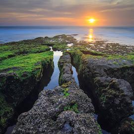spotlight by I Made  Sukarnawan - Landscapes Sunsets & Sunrises ( bali, sunset, sunrise, landscape )