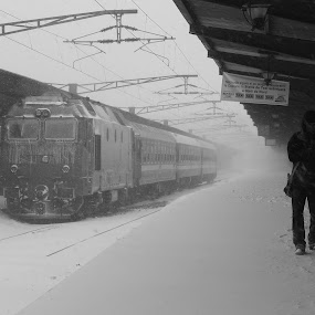 The lonely passenger by Florin Cepraga - People Street & Candids ( passenger, station, snow, train, storm, lonely,  )