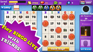 Screenshot of Bingo 2014
