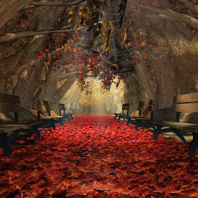 Autumn Park [Illustrated 3D] by Jamie Keith - Illustration Places