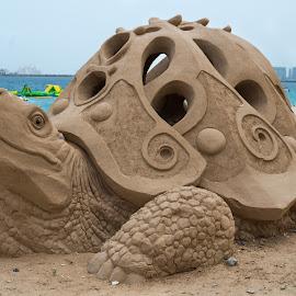 Turtle beach by Sean Heatley - Artistic Objects Other Objects ( water, dubai, uae, travel, beach, turtle, sandcastle )
