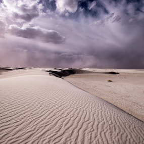 Sand Storm approaches  by Michael Keel - Landscapes Deserts