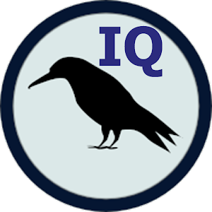 Raven IQ Test Icon