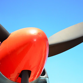 Nose cone by Alan Bryce - Transportation Airplanes ( red, blue, airplane, propellor, nose cone )