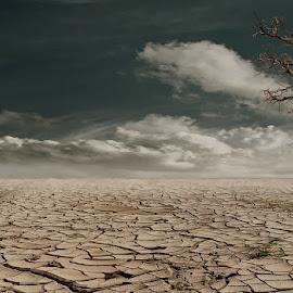 beautiful desert by Eduardo Stoffels - Landscapes Deserts ( beautiful desert, desert art, dry, desert, africa )