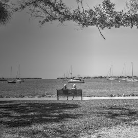 The Big Chat by Mark Ayers-Stebenne - People Couples ( water, love, seniors, florida, tropical, marina, sarasota,  )