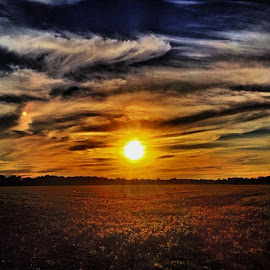 Sunset fields by Zeralda La Grange - Instagram & Mobile iPhone