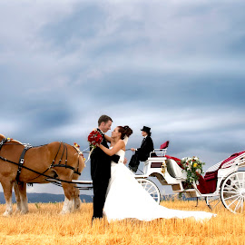 Stormy Love by Ryan Lindberg - Wedding Bride & Groom ( wedding, horse deer park wasinghton )