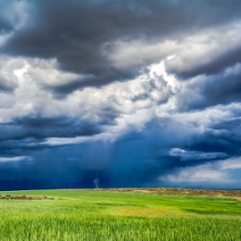 Spring Storm Touchdown by Bob Juarez - Landscapes Weather ( clouds, funnel, farmland, wheatland, storm )