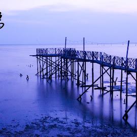 The Bridge by Chea Kok Jun - Buildings & Architecture Bridges & Suspended Structures